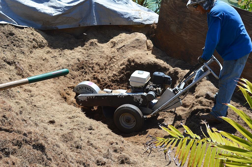 Removing CIDP with Fusarium - Stump Grinding