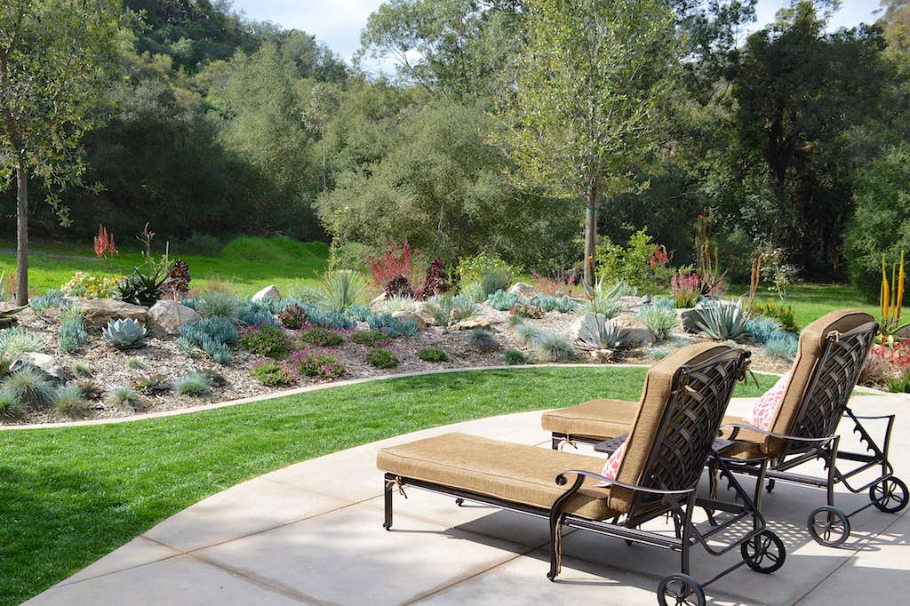 The Stainton backyard landscape and plant consultation