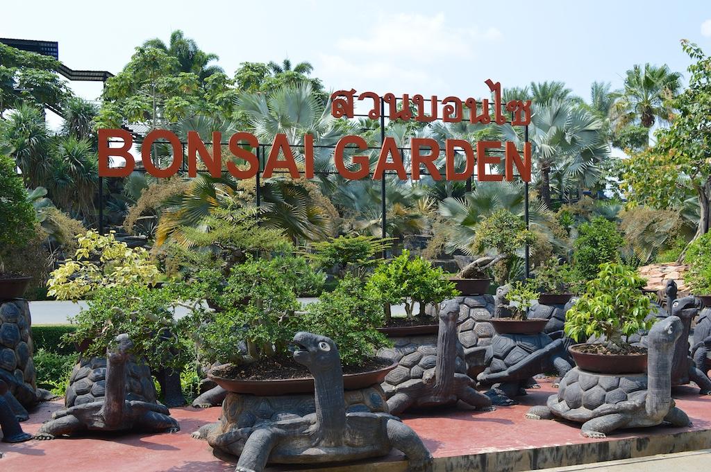 Nong Nooch Tropical Botanical Garden Bonsai Garden