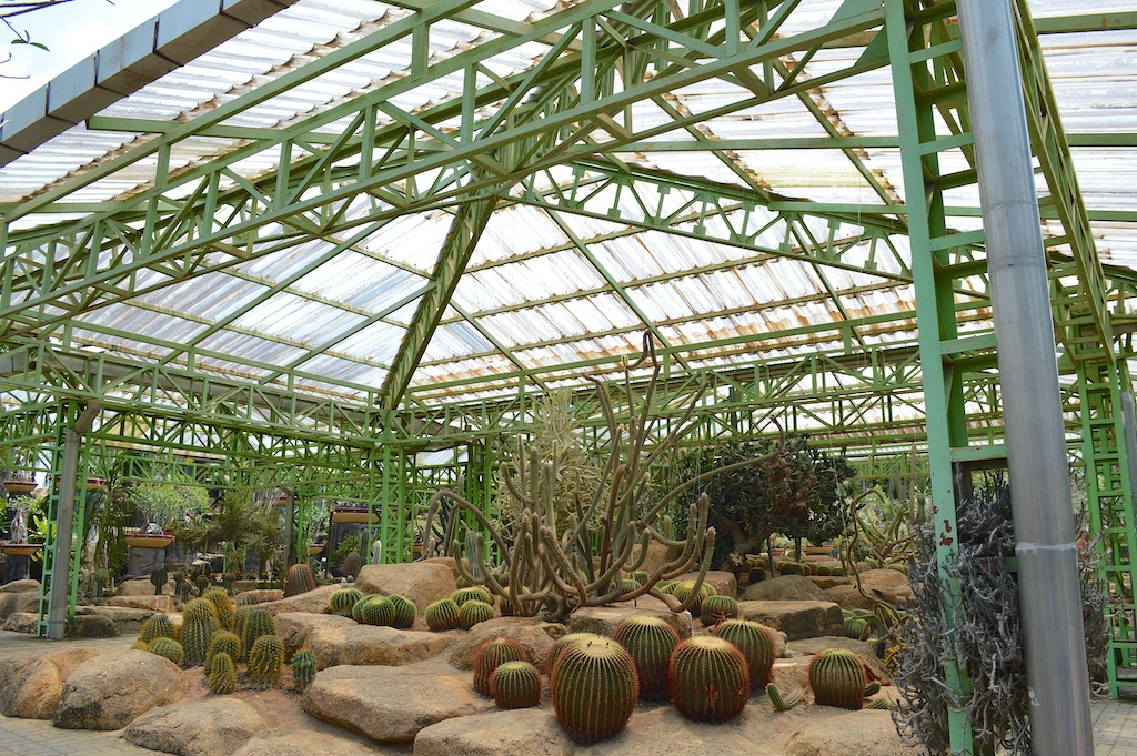 Nong Nooch Tropical Botanical Garden Cactus