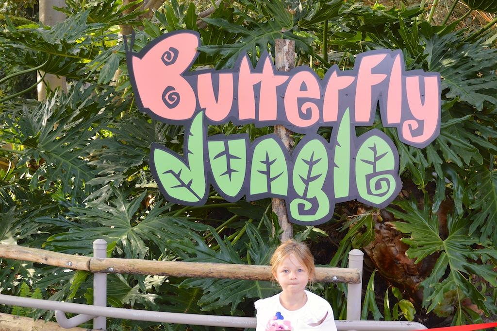 Safari Park Butterfly Jungle