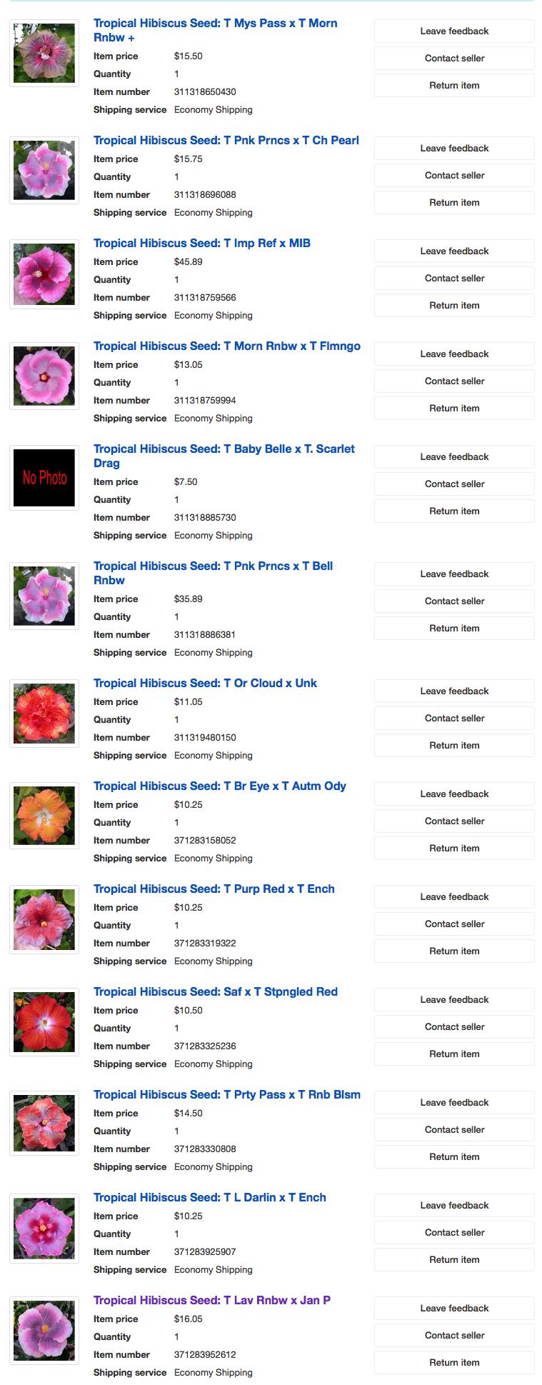 eBay Hibiscus Seed Wins
