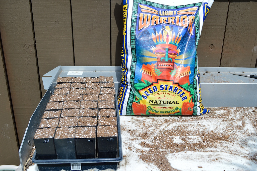 Hibiscus Seed Germination Mix