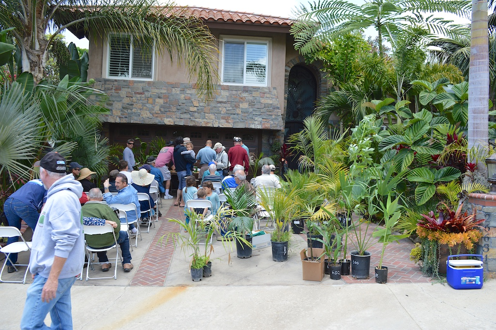 PSSC Plant Auction