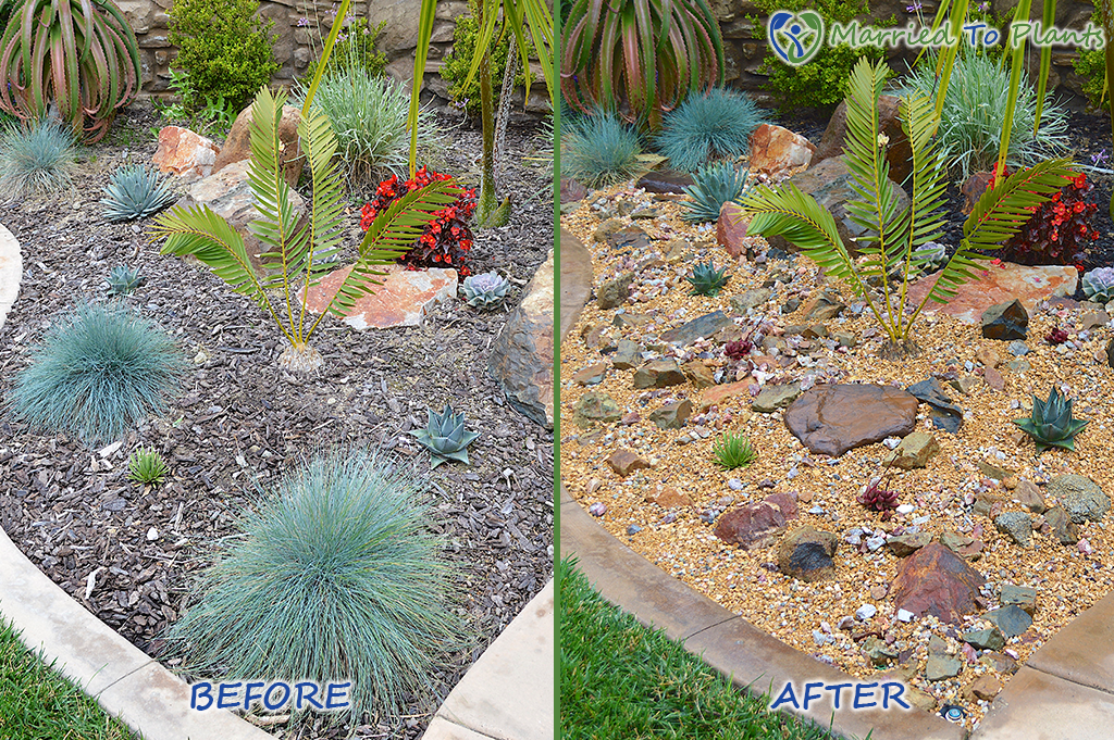Rock Garden Before and After