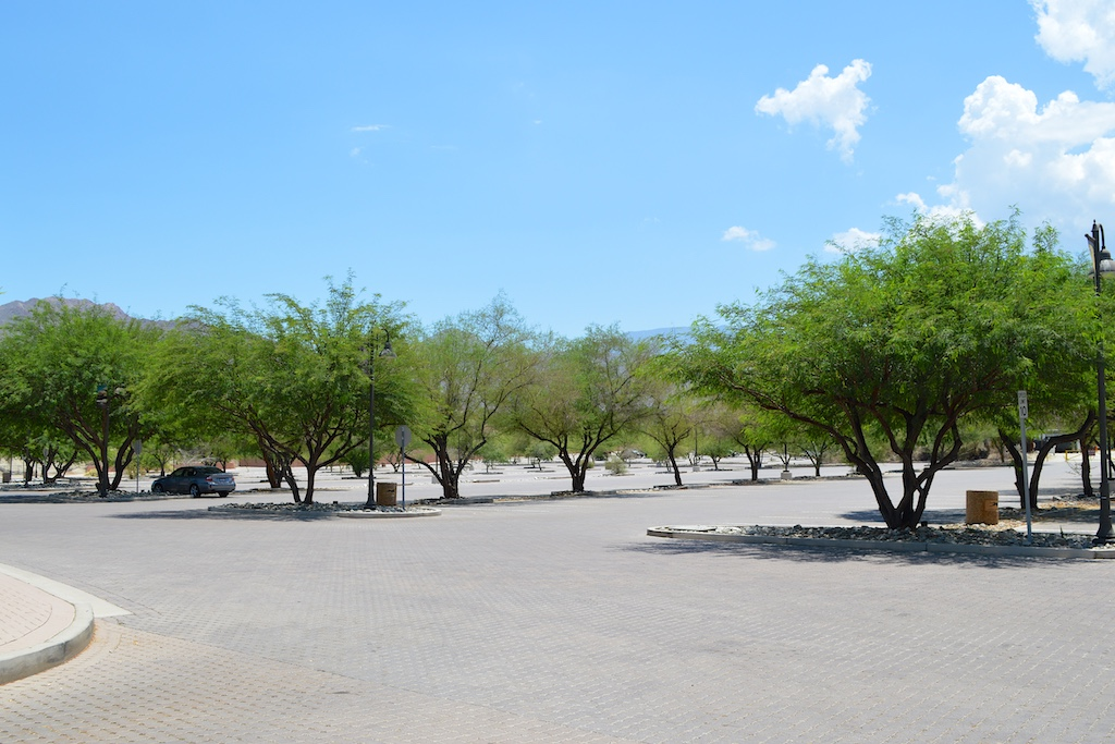 The Living Desert Parking Lot