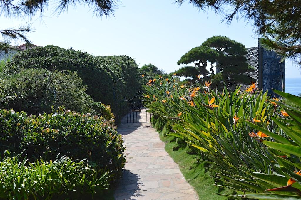 Self Realization Fellowship Meditation Gardens Monterey Pine