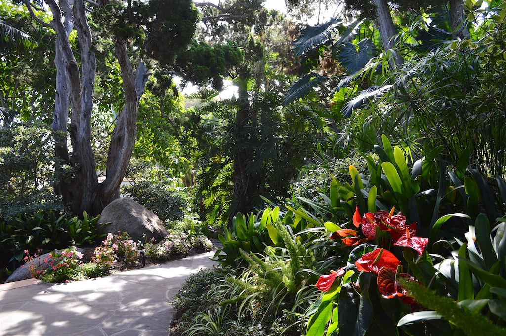 Self Realization Fellowship Meditation Gardens Walkway