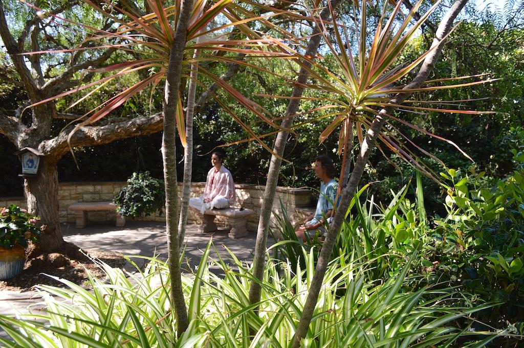 Self Realization Fellowship Meditatio