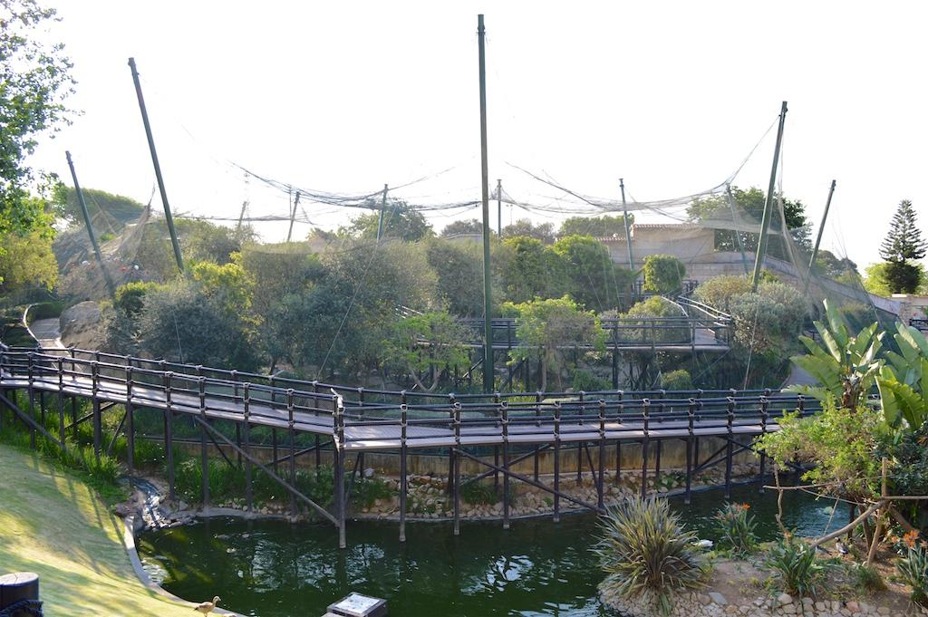 Montecasino Bird Gardens Aviary