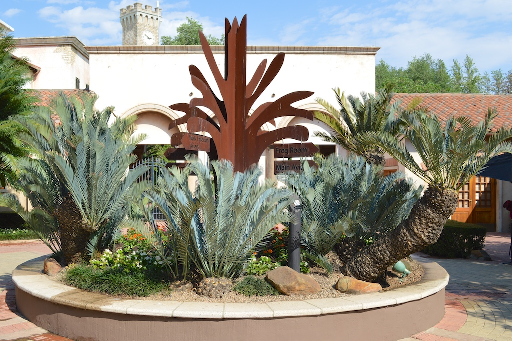 Montecasino Bird Gardens Entrance Cycad Display