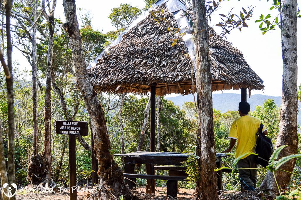 Mantadia National Park Circuit Trek Overlook