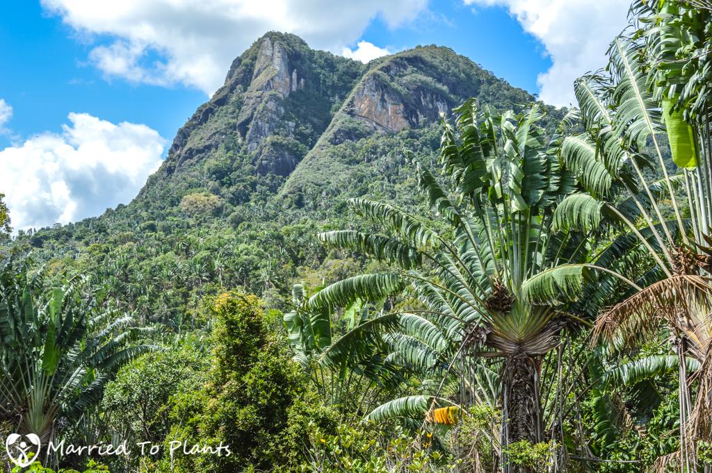 Mount Vatovavy Madagascar