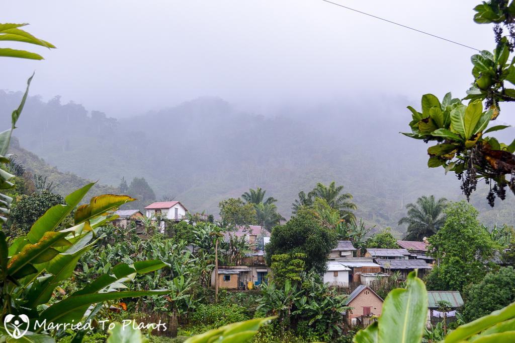 Raining at Ranomafana
