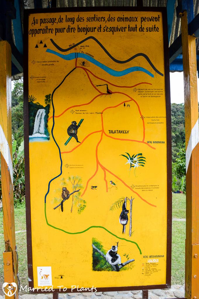 Talatakely Trek at Ranomafana