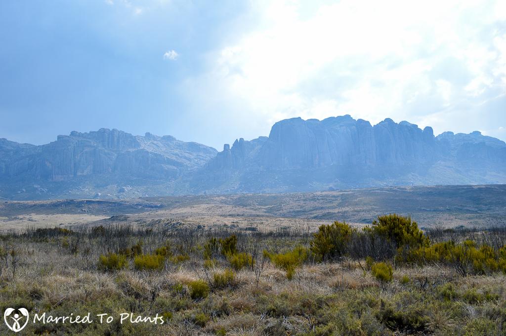 Andringitra National Park Landscape