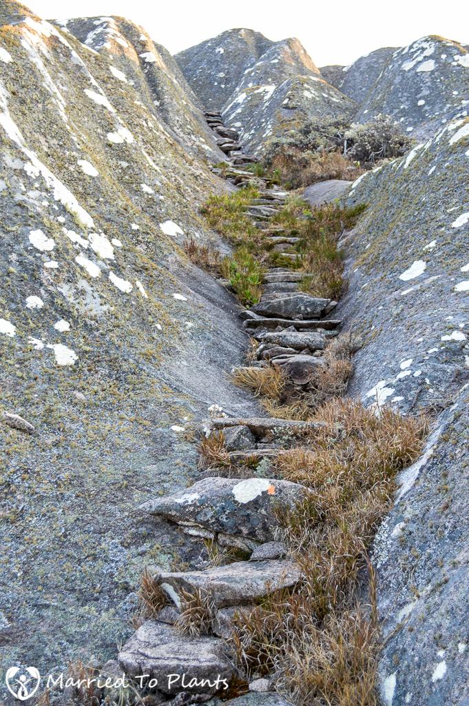 Peak Boby Stairs