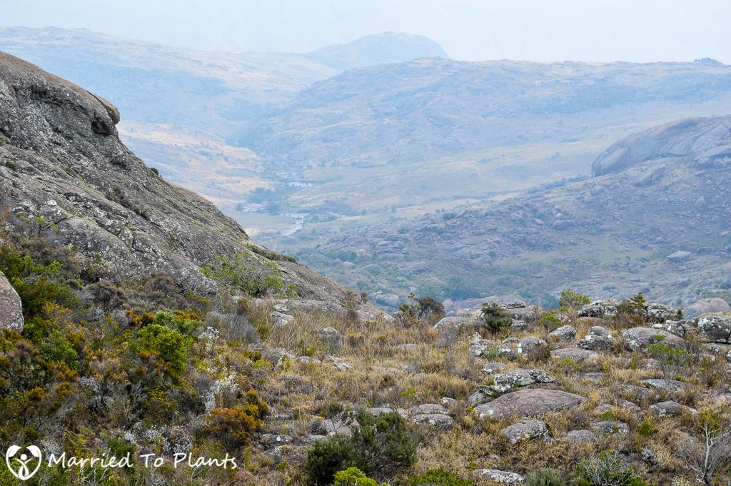 Andringitra Camp#2 Valley
