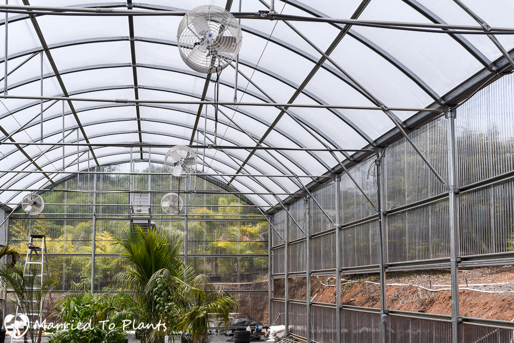 Greenhouse Air Circulation : Realizing a dream and starting nursery