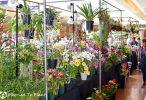 Southern California Spring Garden Show: At Home in The Garden