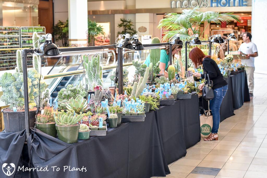 SC Spring Garden Show Rain Shadow Designs