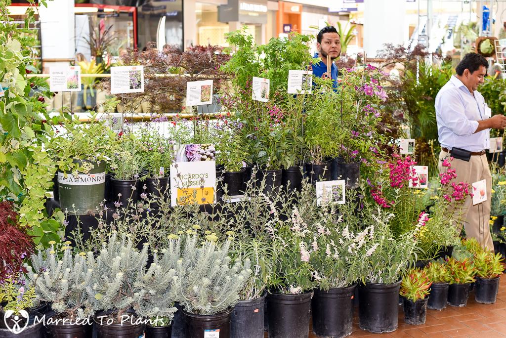 SC Spring Garden Show Recardo's Nursery