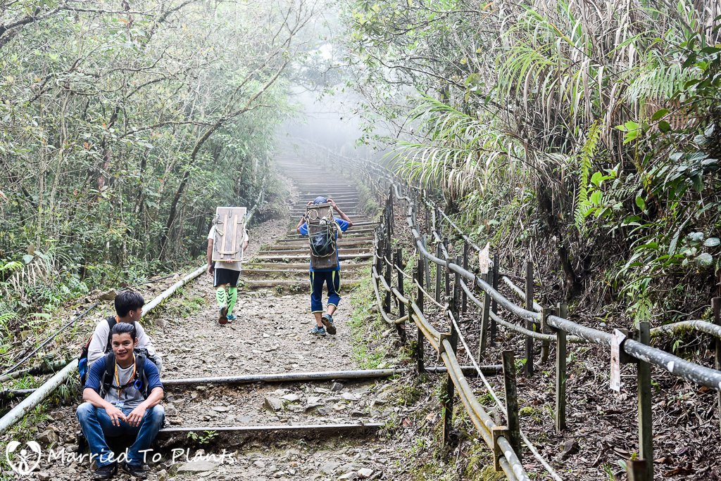 Mount Kinabalu Finishing Steps