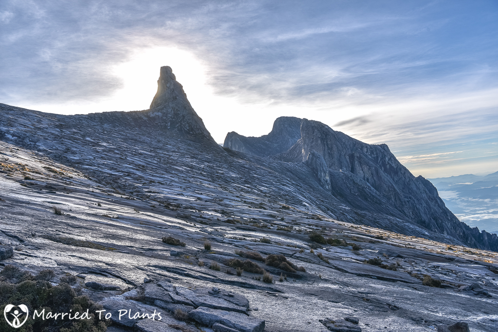 Mount Kinabalu Granite Spear