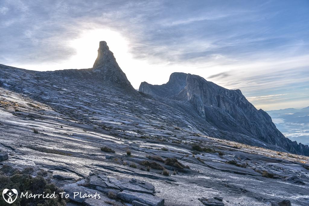 Mount Kinabalu Granite Spear