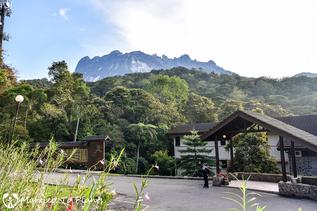 Mount Kinabalu Liwagu Suites