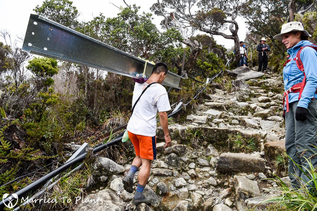 Mount Kinabalu Porter