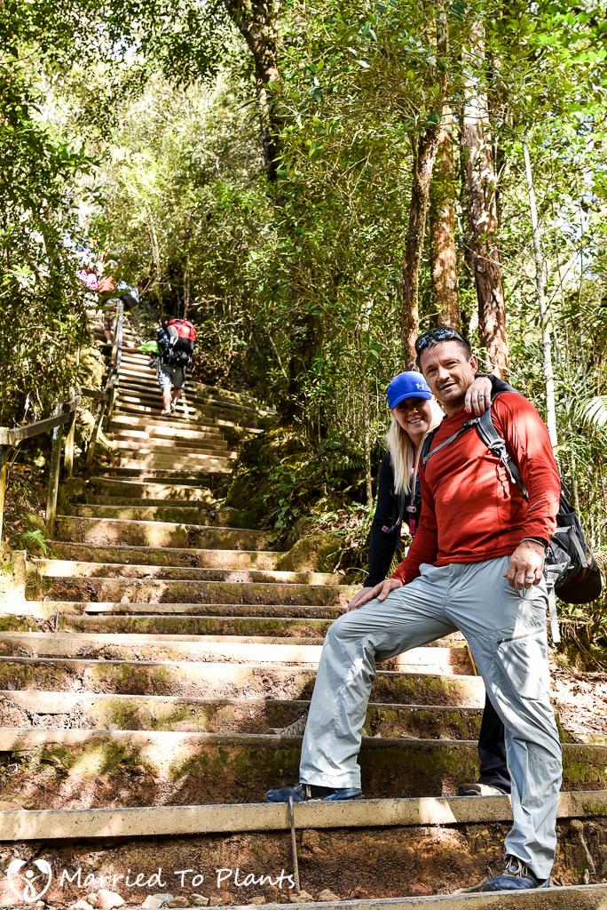 Mount Kinabalu Trail Steps