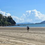 Wanderings in the Great Forests of Borneo: Bako National Park