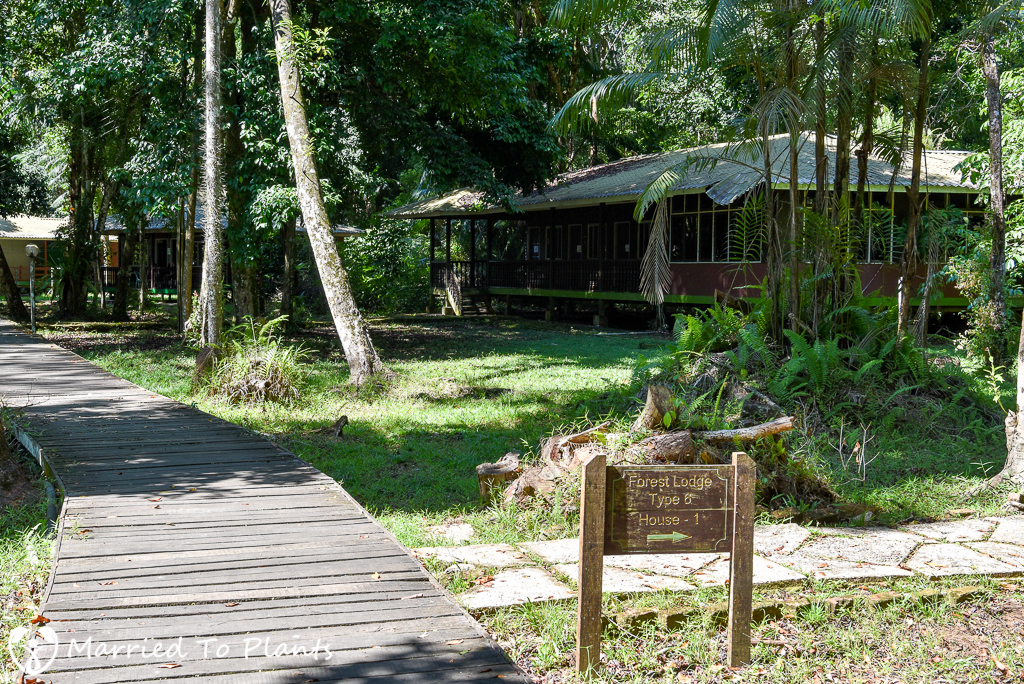 Bako National Park Forest Lodge