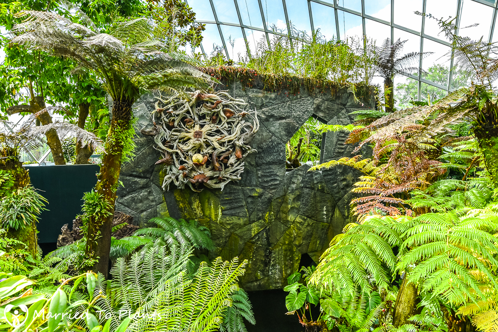 Gardens by the Bay Cloud Forest Driftwood Art