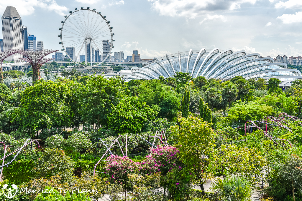 Gardens by the Bay Dome and Ferris Wheel
