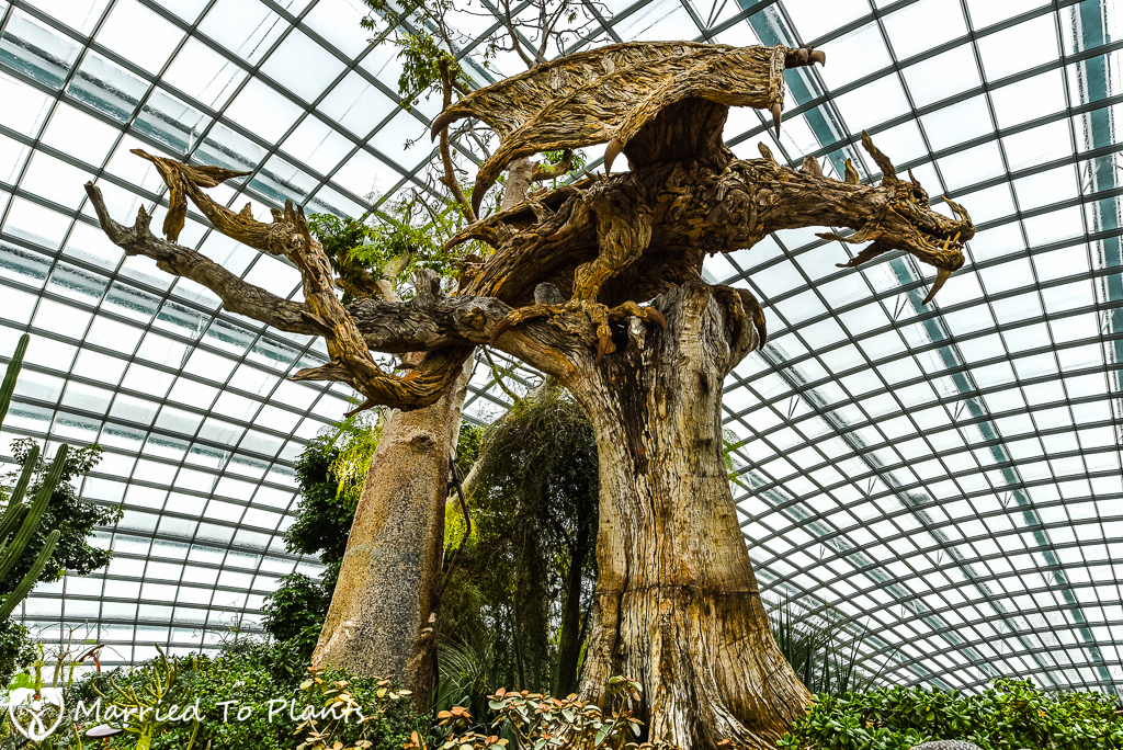 Gardens by the Bay Flower Dome Driftwood Art