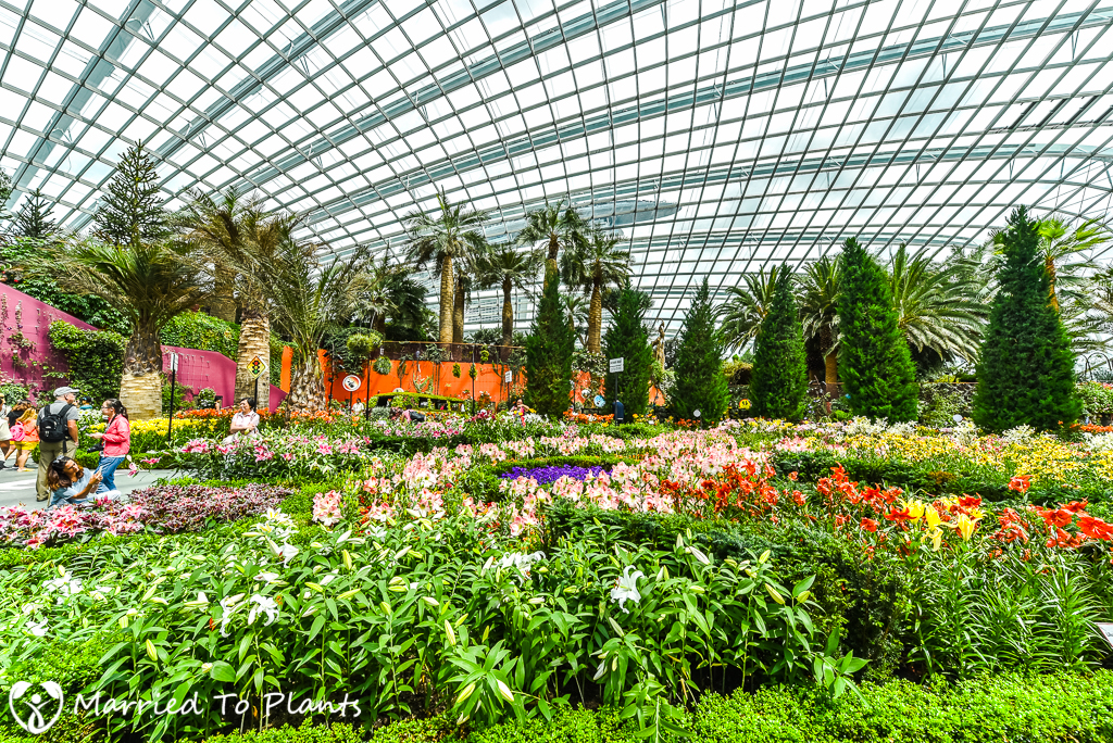 ... Gardens By The Bay Flower Dome