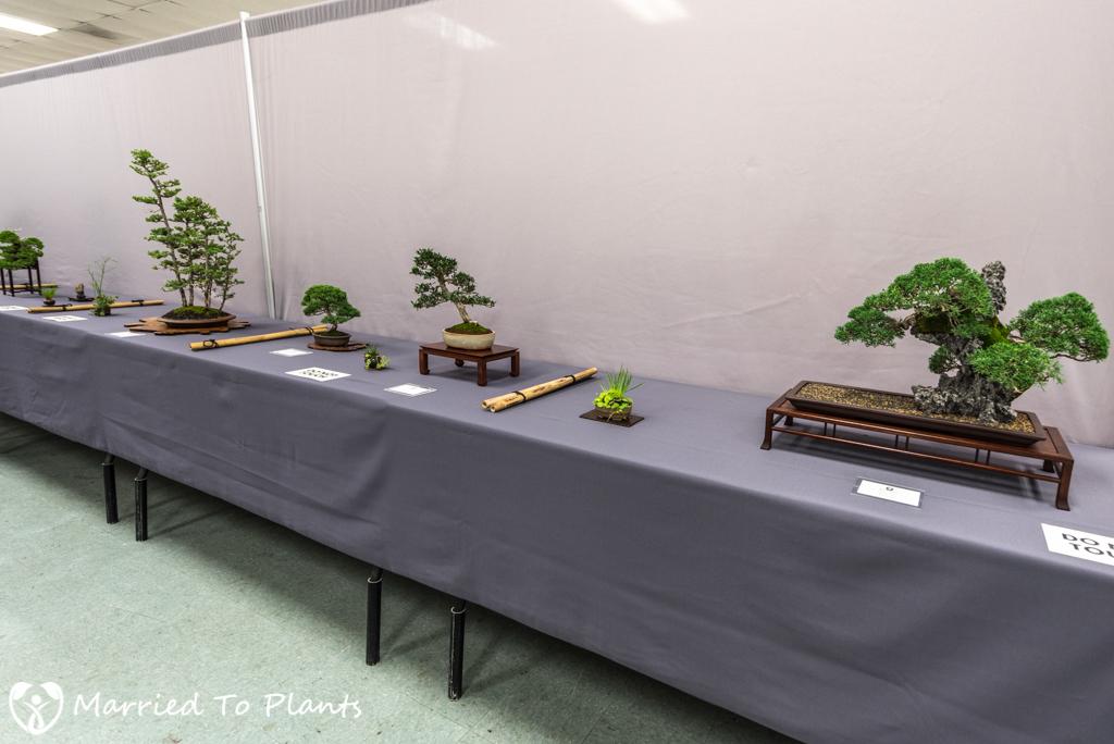 SDBC Exhibition Display Table
