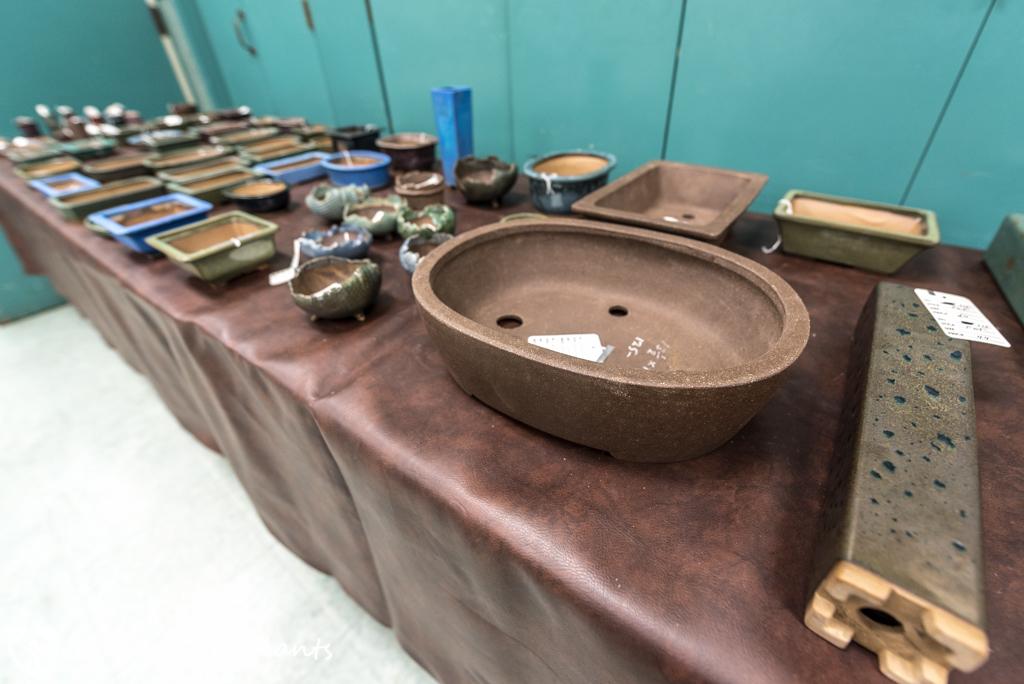 SDBC Exhibition Sale Pots