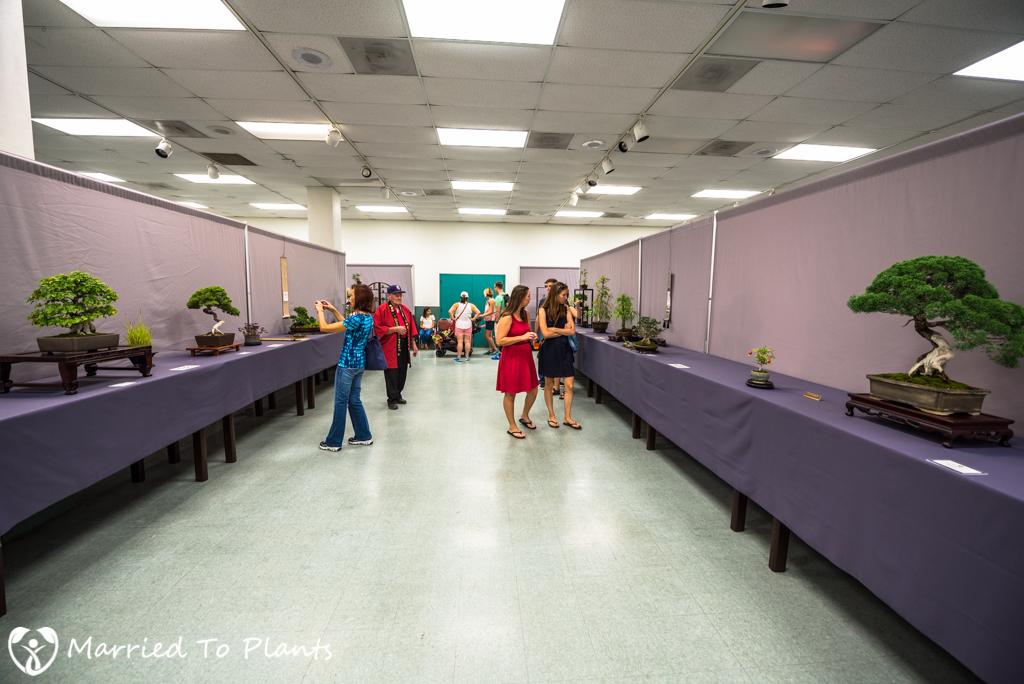 SDBC Exhibition Display Tables