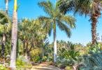 A tour of the beautiful Cuesta Linda garden estate in Vista