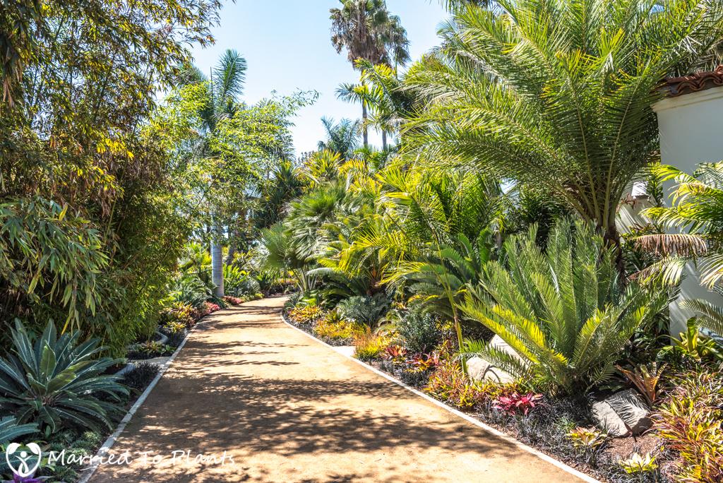 Cuesta Linda PSSC - Garden Pictures