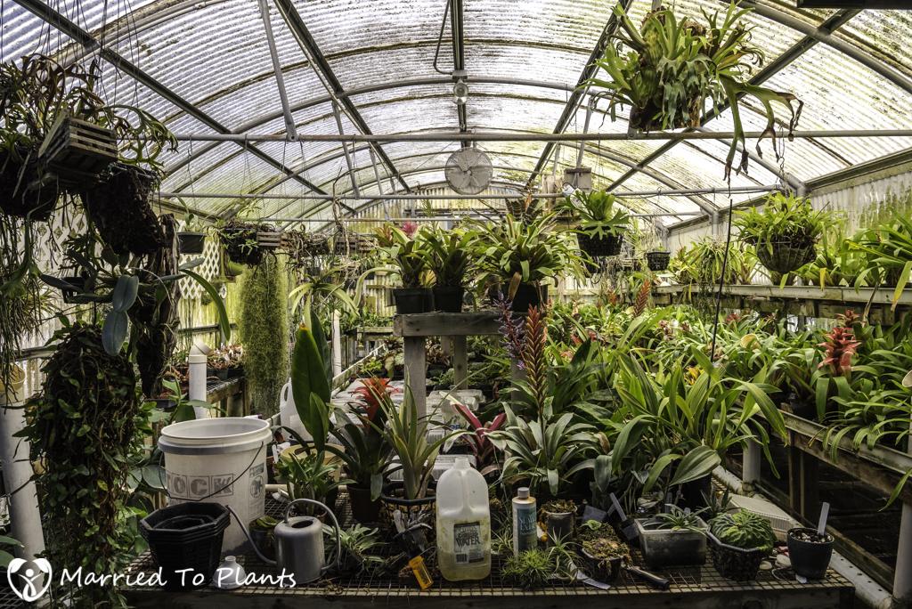 Nakanishi Greenhouse