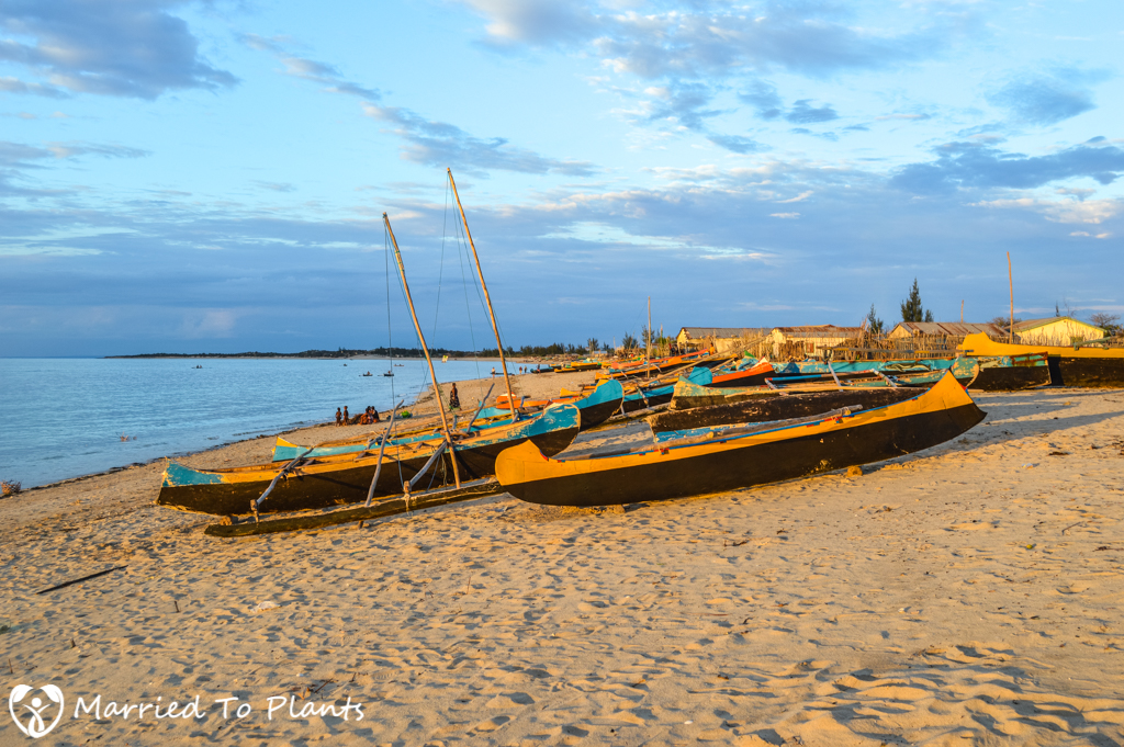 Anakao Boats at Sunset