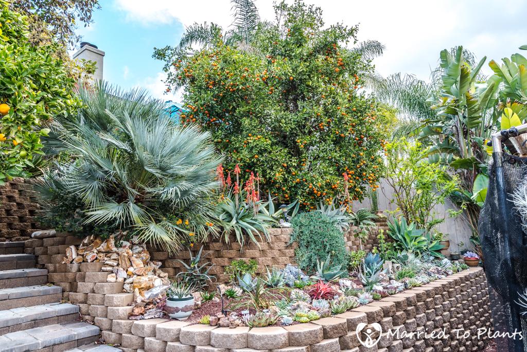 bjorklund garden backyard hill