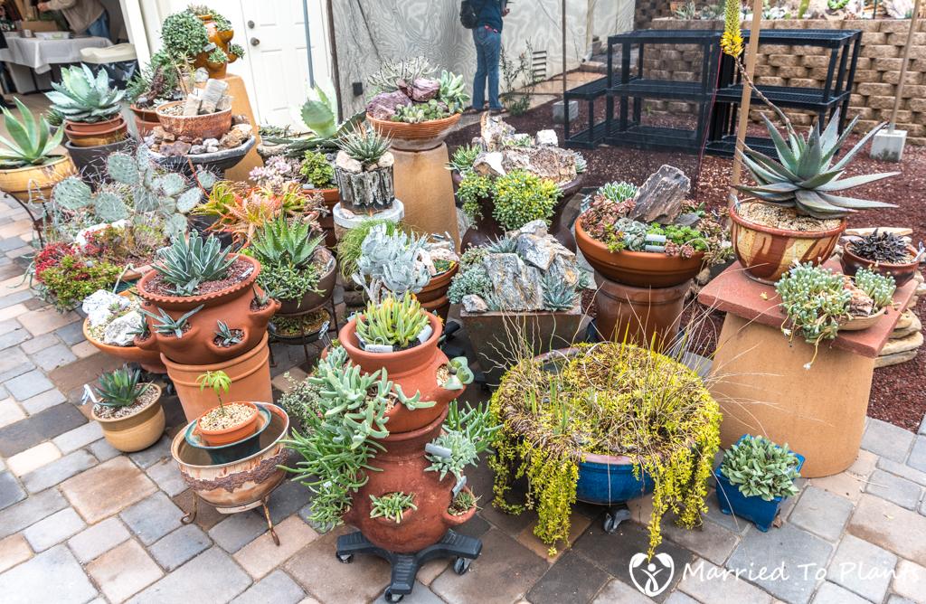 Bjorklund Garden Backyard Pot Displayv