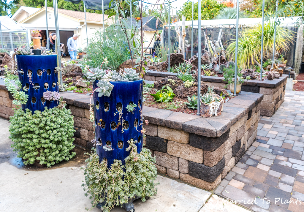 Bjorklund Garden Blue Pots