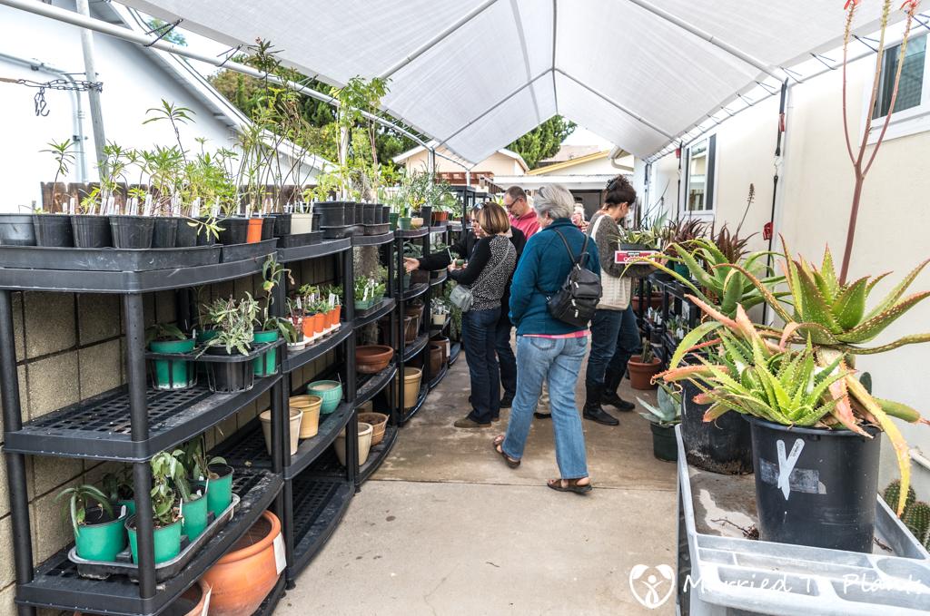 Bjorklund Garden Plant Sale