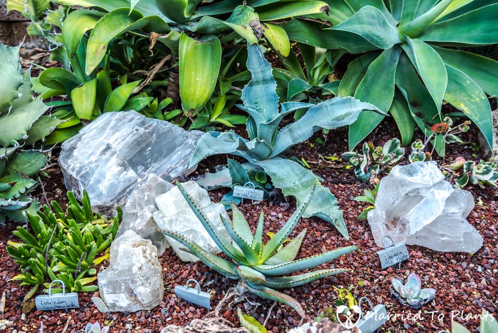 Bjorklund Garden Quartzite Rock